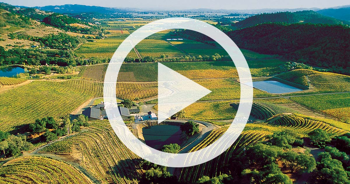 VIDEO: Discover Stags Leap District – An American Wine Treasure
